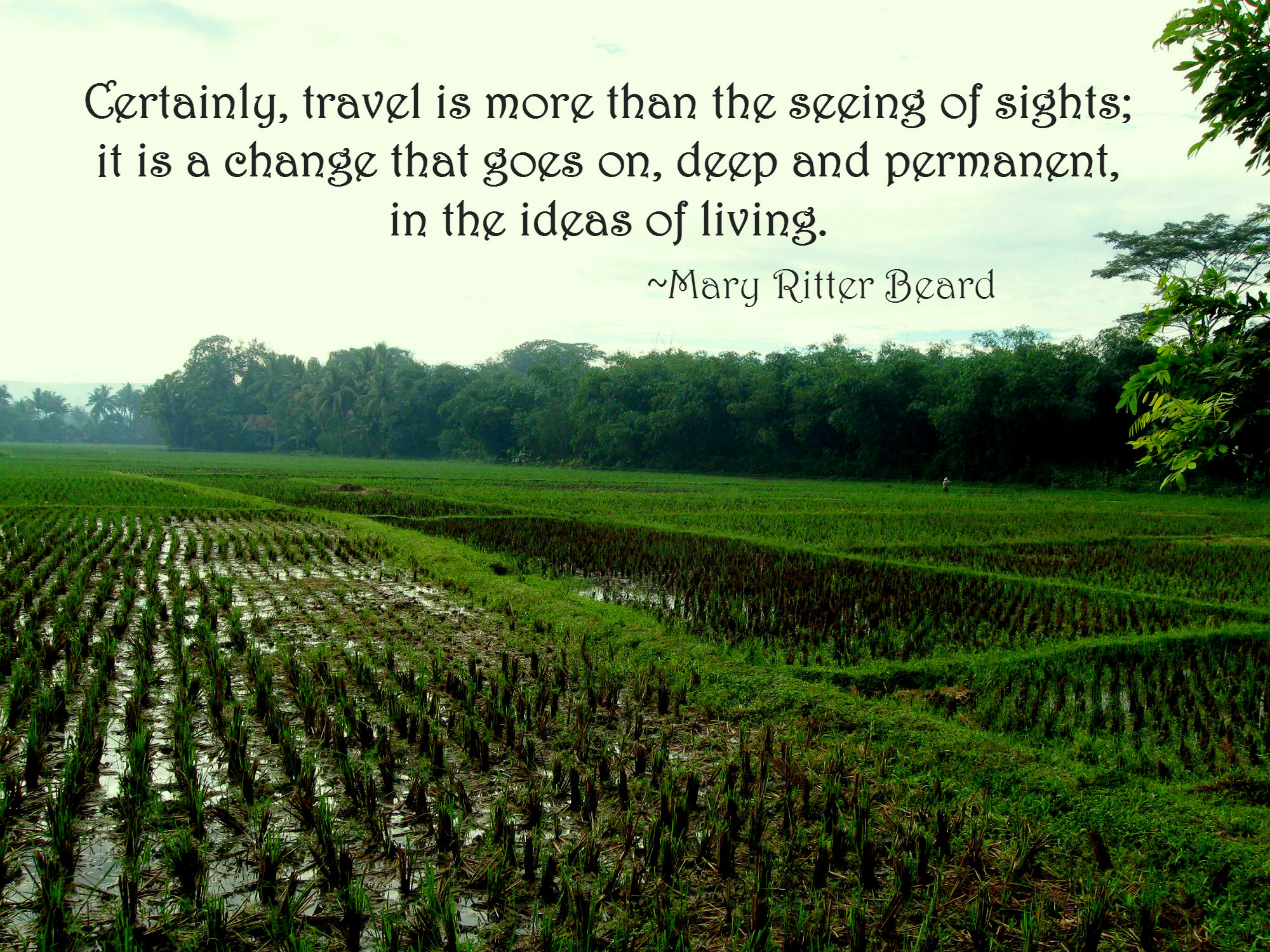 Travellers Voice: The Most Inspirational Travel Quotes