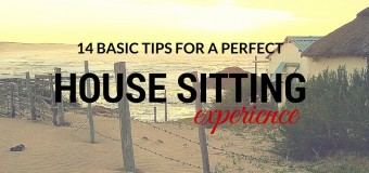 14 basic tips for a perfect House Sitting experience