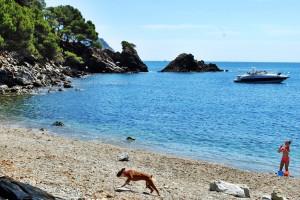 coastal-walk7