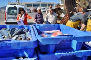fish-auction2