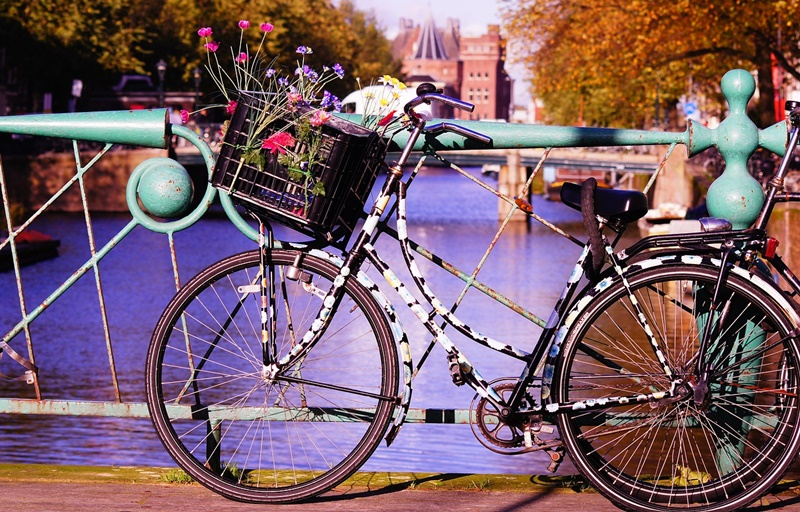 bike-1002939_1280