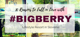 10 Reasons to Fall in Love With Big Berry Camp in Slovenia