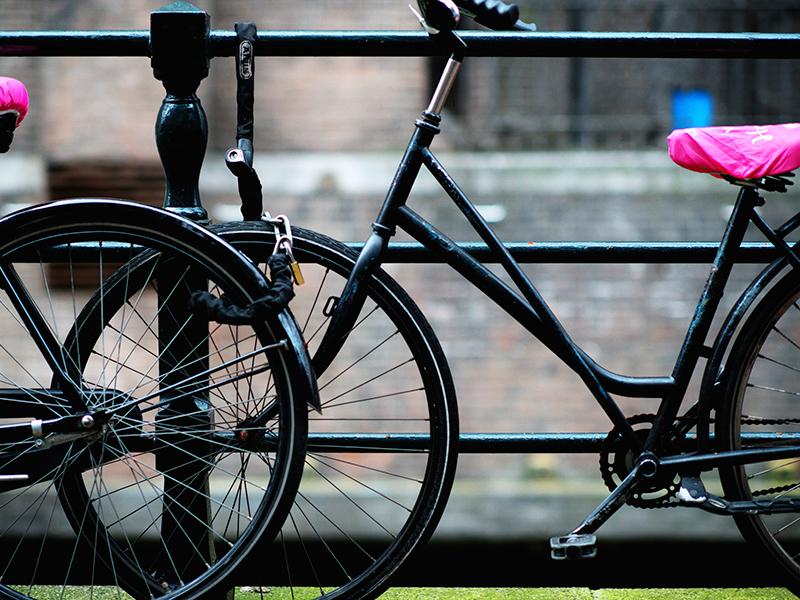 quokka_travel_amsterdam_bikes