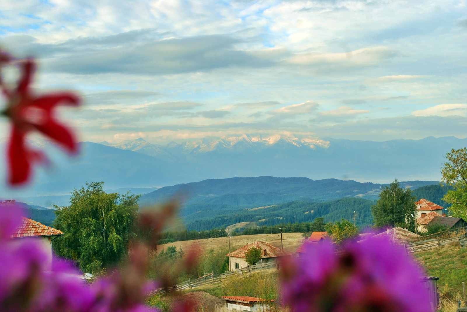mountain biking bulgaria ortsevo