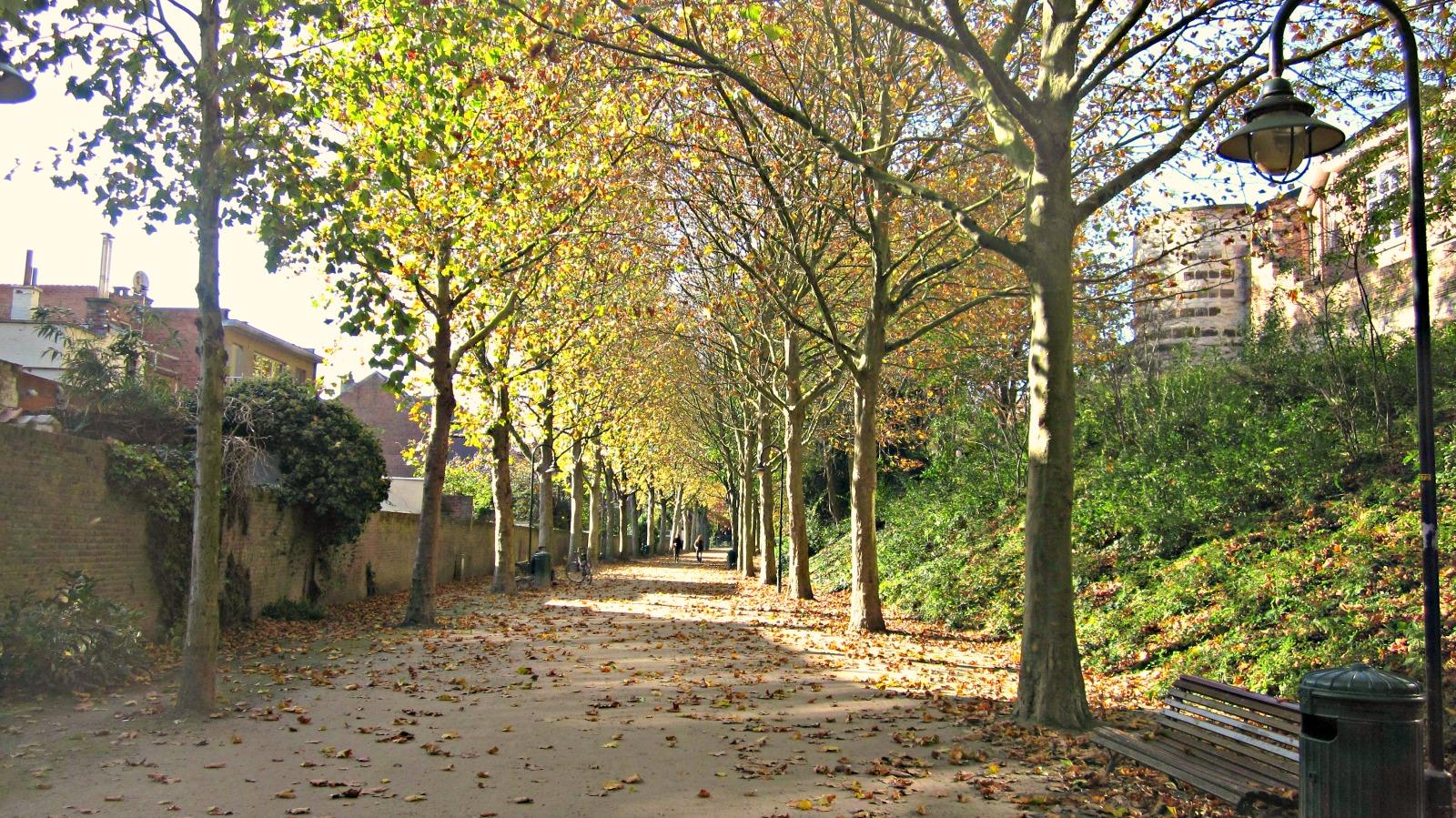 stadspark Leuven Belgium