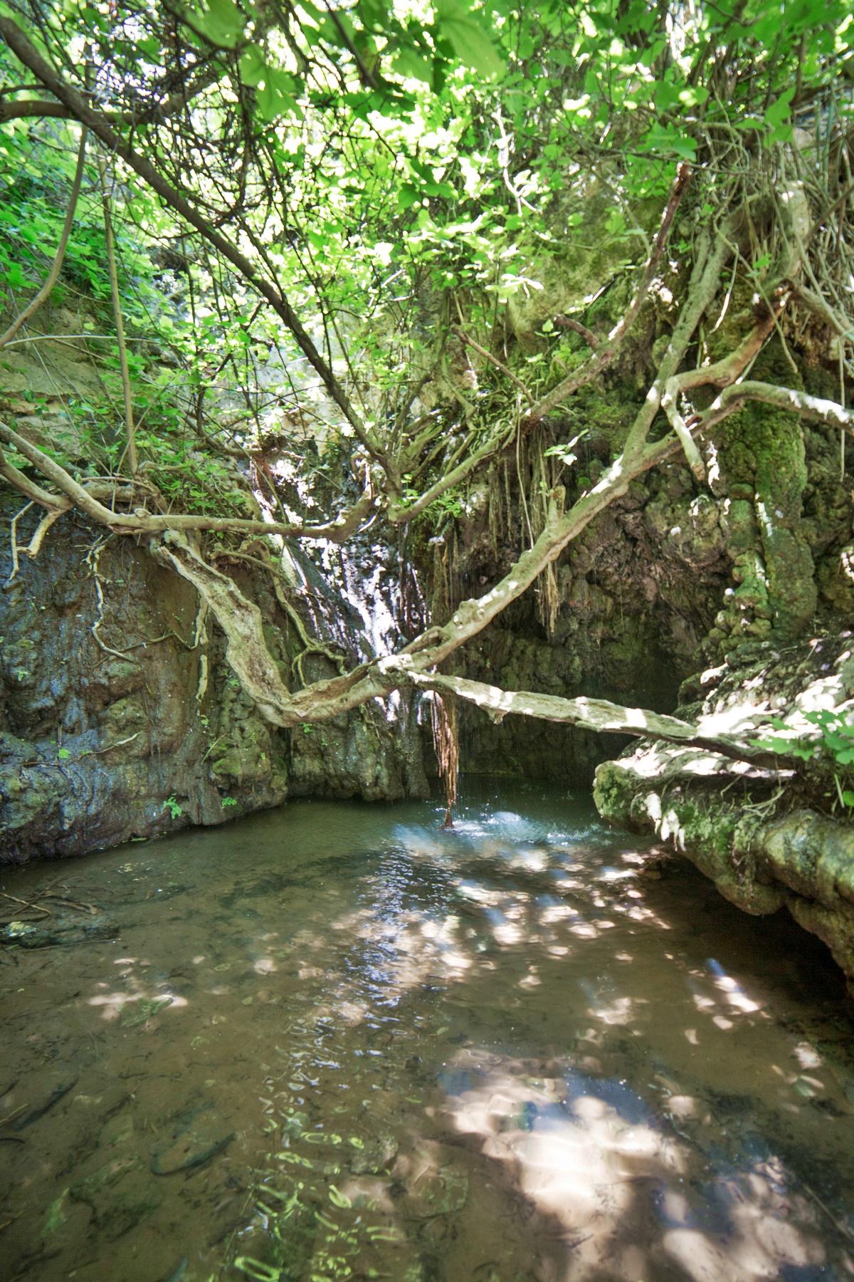 aphrodites baths cyprus